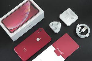 iPhone Xr về thị trường Việt Nam, giá khởi điểm 20,9 triệu đồng