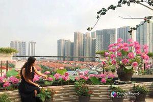Chuyển hàng tấn đất làm ao sen, trồng hồng trên sân thượng, xây 'thiên đường' phủ kín hoa