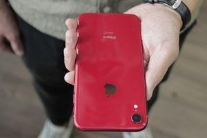 iPhone Xr xách tay rớt giá thảm chỉ sau 1 ngày