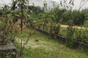 Nghệ An: Dự án di dời 'khẩn cấp' bỏ hoang... dân lo ngay ngáy