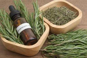 Những loại tinh dầu giúp giảm cơn đau của bệnh gout