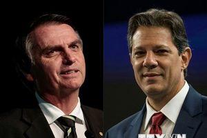 Cử tri Brazil bắt đầu đi bỏ phiếu bầu cử Tổng thống vòng hai