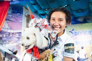 Chú chó mặc trang phục tuồng cổ giành giải Trình diễn thời trang đẹp nhất
