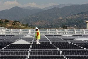 Walmart ký hợp đồng năng lượng tái tạo với SunPower