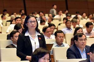 Đề xuất hỗ trợ vốn cho thanh niên nông thôn khởi nghiệp nông nghiệp