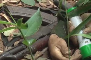 Hiện trường vụ tiêu diệt tội phạm ma túy, thu giữ nhiều vũ khí nóng