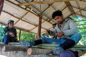 Dân dựng trại thay phiên bảo vệ gần 1.000 ha rừng