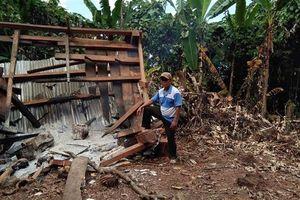 Nửa đêm, 4 bảo vệ rừng bị 40 người kéo lê ra ngoài rồi đốt chòi canh
