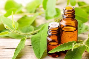 6 biện pháp tự nhiên giúp vượt qua bệnh cúm