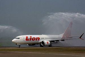 Indonesia: Máy bay chở gần 200 hành khách rơi xuống biển