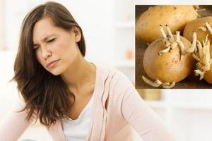 Không ăn khoai tây mọc mầm, tránh 'rước họa' vào thân