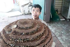 Người dân săn được tổ ong 'khủng' 10 tầng ở biên giới Nghệ An - Lào