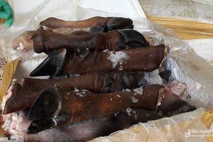 Diễn Châu: Bắt 3 vụ gia cầm và sản phẩm động vật không rõ nguồn gốc
