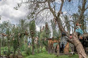 Khiếp sợ hòn đảo ma quái với hàng nghìn con búp bê treo lủng lẳng trên cây
