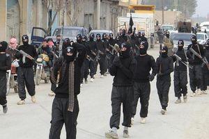 IS đánh bật các chiến binh SDF khỏi Hajin, Syria