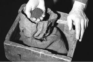 Kế hoạch 'trộm long tráo quạ' hoàn hảo trong vụ cướp vàng ở Anh