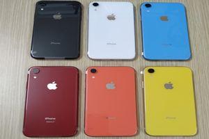 Trọn bộ 6 màu sắc của iPhone Xr giá rẻ, giá bán từ 22,99 triệu đồng