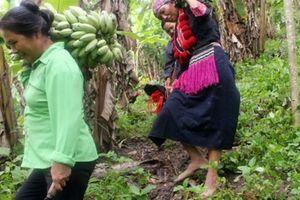 Xóa nghèo bên vững, từ câu chuyện nâng cao quyền năng phụ nữ ở xã Thanh Vận, huyện Chợ Mới, tỉnh Bắc Kạn
