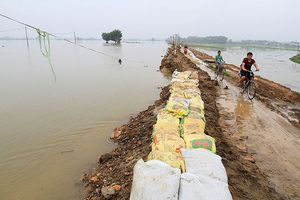 Hà Nội nâng cấp đê tả Bùi sau trận lụt lịch sử