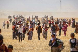 Người Yazidi khốn đốn dưới bàn tay tàn độc của IS