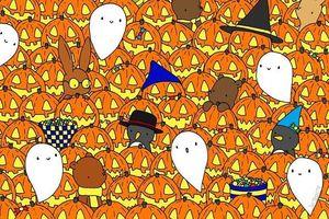 Đố bạn tìm thấy ngôi sao giữa những quả bí ngô Halloween