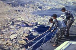 Rơi máy bay Indonesia: Tìm thấy ít nhất 10 thi thể