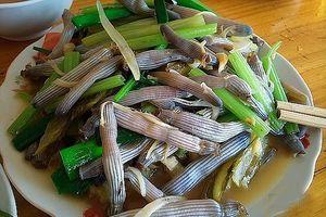Nếm thử những món hải sản độc đáo chỉ có tại Quảng Ninh