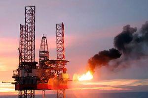 Bồ Đào Nha: Galp và ENI từ bỏ dự án khoan dầu gây tranh cãi