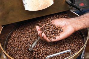 Giá cà phê hôm nay 30/10: Giá cà phê đi ngang