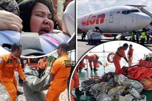 Vụ máy bay của Lion Air gặp nạn: Máy bay mới, phi công giàu kinh nghiệm