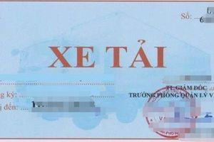 Sở GTVT Bạc Liêu bồi thường 80 triệu đồng vì thu hồi sai phù hiệu xe