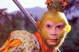 Những điều chưa từng tiết lộ về Tôn Ngộ Không: Người đầu nhận vai không phải Lục Tiểu Linh Đồng