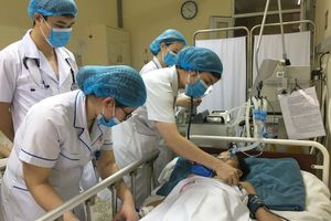 Đi soi cóc, bé 14 tuổi bị rắn cực độc cắn liệt cơ, suy hô hấp nặng