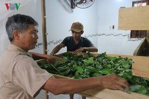Chương trình mỗi xã một sản phẩm ở Phú Yên khó tìm được thị trường