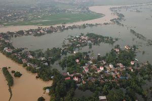 Hà Nội xử lý khẩn đê sông Bùi sau trận lũ lịch sử