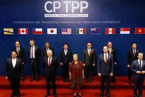 Đủ 6 nước phê chuẩn, TPP-11 có hiệu lực từ cuối năm nay