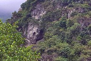 Lạng Sơn: Di tích khảo cổ cấp quốc gia bị 'bỏ quên', cây dại um tùm