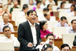 Chất vấn và trả lời chất vấn tại Kỳ họp thứ sáu, Quốc hội khóa XIV: Truy đến cùng việc thực hiện lời hứa