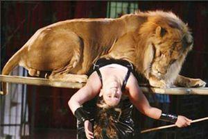 Sư tử xé toạc hàng rào sân khấu, lao ra vồ bé 4 tuổi