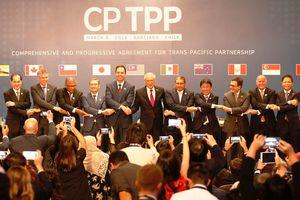 CPTPP sẽ có hiệu lực từ cuối tháng 12 sau khi 6 nước chính thức phê chuẩn