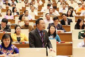 Đại biểu Quốc hội lưu ý 'sai lầm trong xét xử rất khó sửa chữa một cách tuyệt đối'