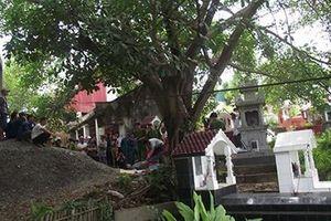 Nghi phạm giết người phụ nữ ở Cà Mau đã tự tử