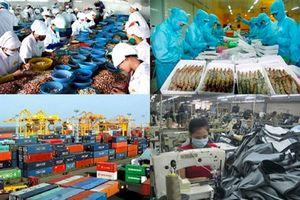 Infographics - Kinh tế Việt Nam tiếp tục chuyển biến tích cực