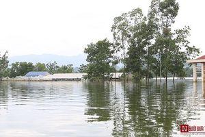 Nâng chiều cao đê tả Bùi: Nước lũ có bị tràn vào nội thành Hà Nội?