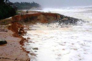 Thừa Thiên Huế: Đầu tư hơn 300 tỷ đồng xây kè chống sạt lở bờ biển