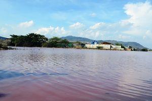 Bà Rịa - Vũng Tàu: Quyết tâm cải thiện môi trường ở các đầm chứa nước