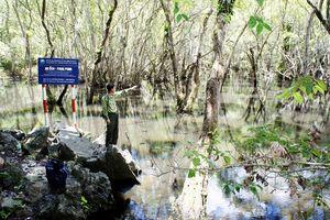 Hải Phòng: Bảo tồn đa dạng sinh học, phát triển bền vững hệ sinh thái