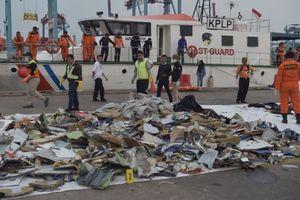 Vụ máy bay Lion Air rơi: Đình chỉ giám đốc kỹ thuật của hãng