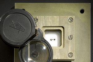 Đá thiên thạch từ mặt trăng được đấu giá 1 triệu USD