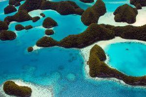 Bất ngờ đảo quốc cấm kem chống nắng để cứu lấy san hô